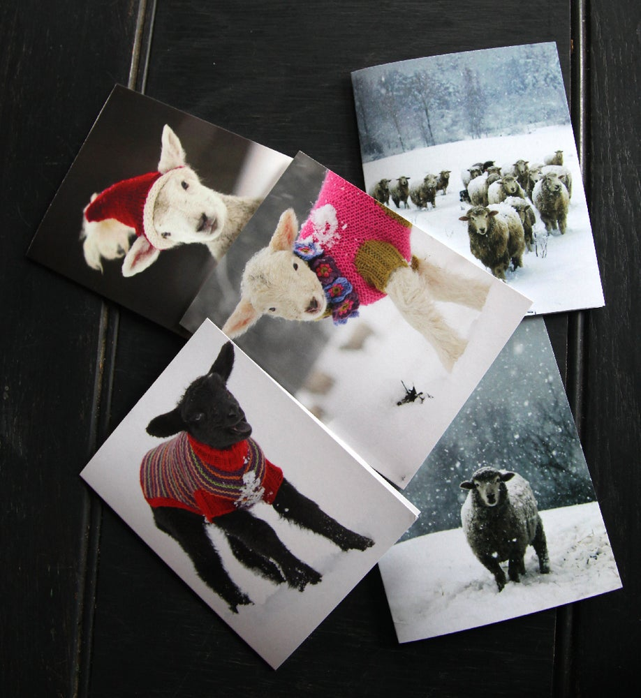 Image of Notecards Assorted (10 Total) - 2 Each Design - FREE SHIPPING