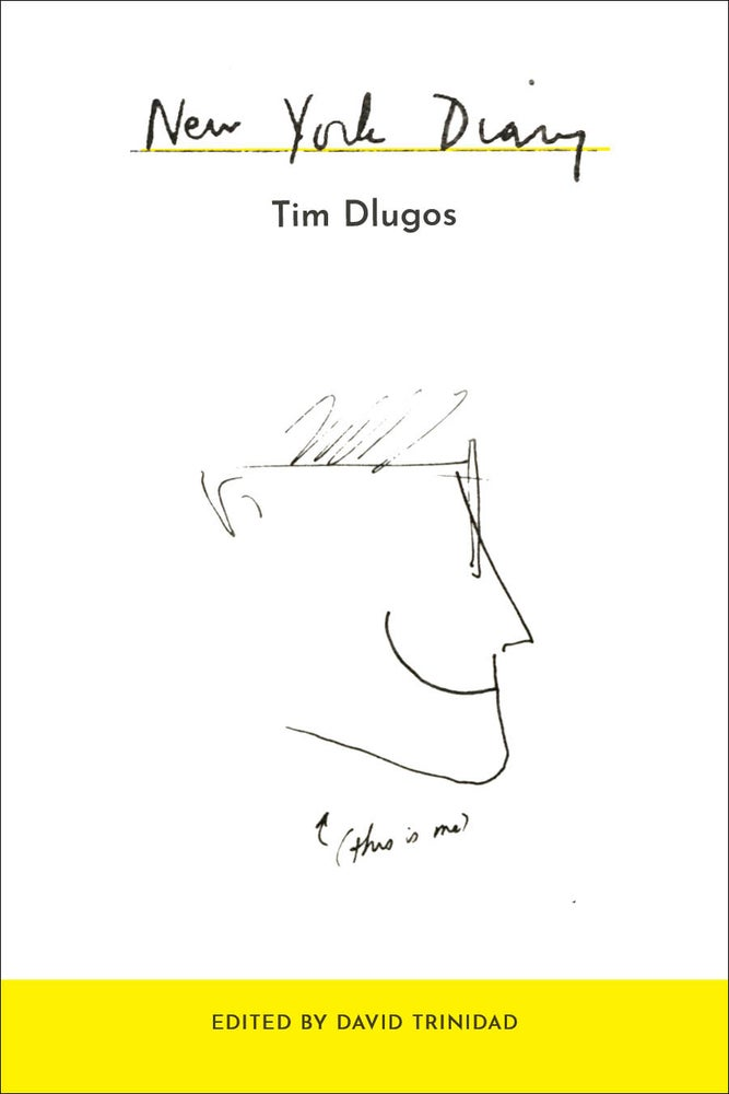 Image of New York Diary by Tim Dlugos, Edited by David Trinidad
