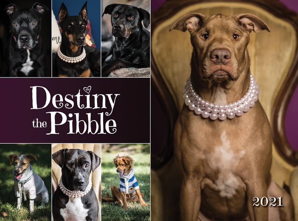 Image of Destiny the Pibble 2021 calendar