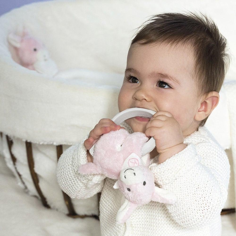 Image of Anneau de dentition Les Amis Babies Regliss'anon rose ou bleu