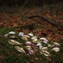 Copper Dryad leaf earrings