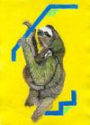 Three Toed Sleepy Sloth – A4 Print