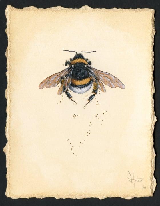 Image of Pollen 2 (November 2020)