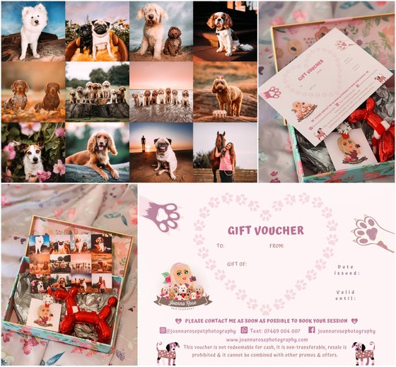 Image of Pet Photography Gift Voucher