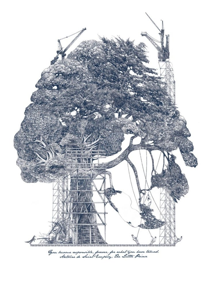 Image of Tamed tree