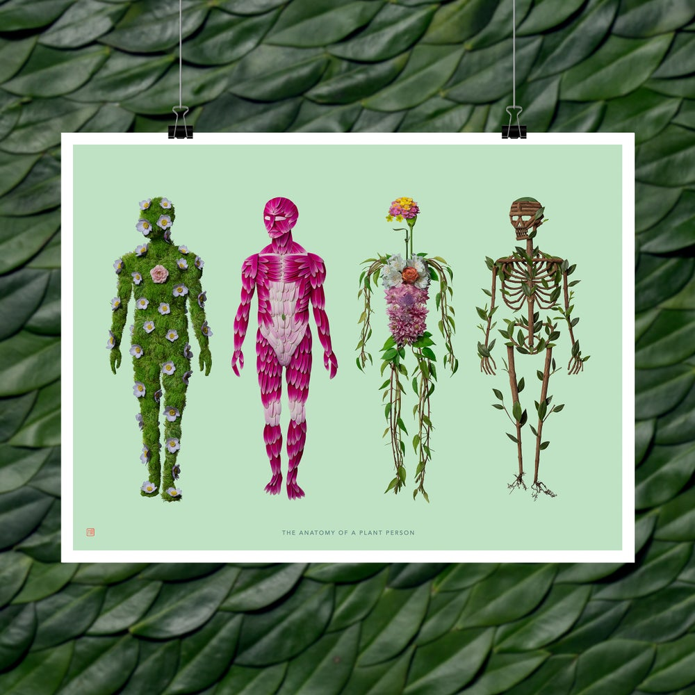 Image of Fine Art Print - The Anatomy of a Plant Person (Male Version)