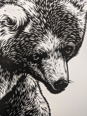 Image of Bear original linocut print