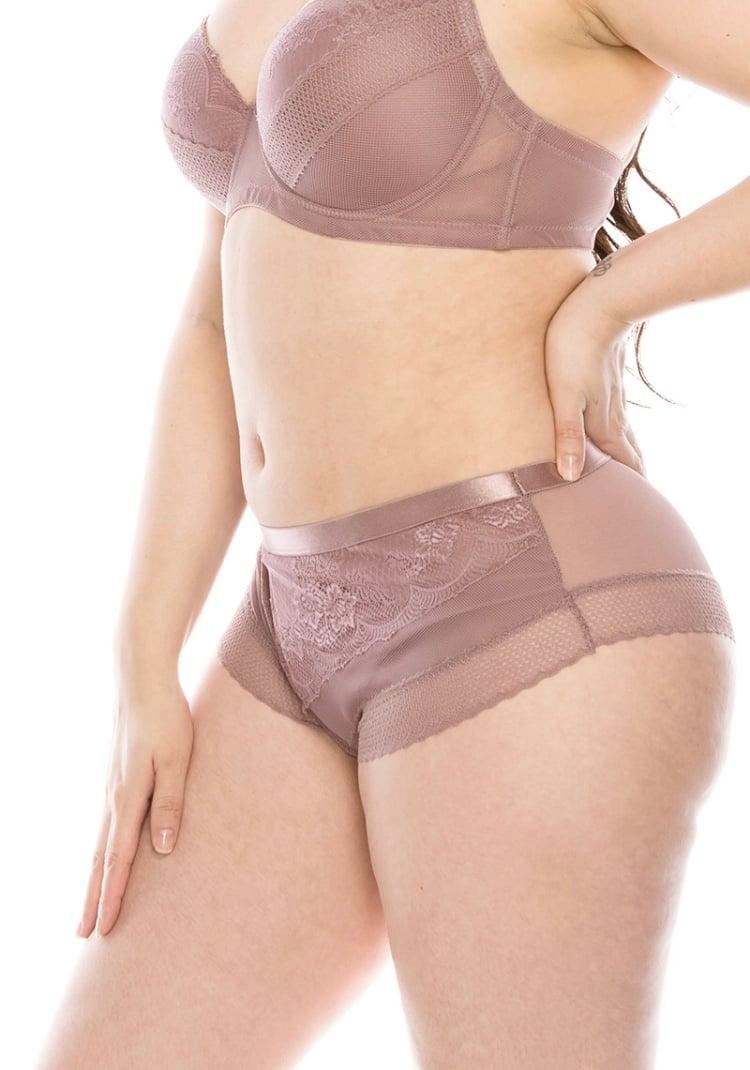 Image of #Smokin Mesh & Lace Plus Panties