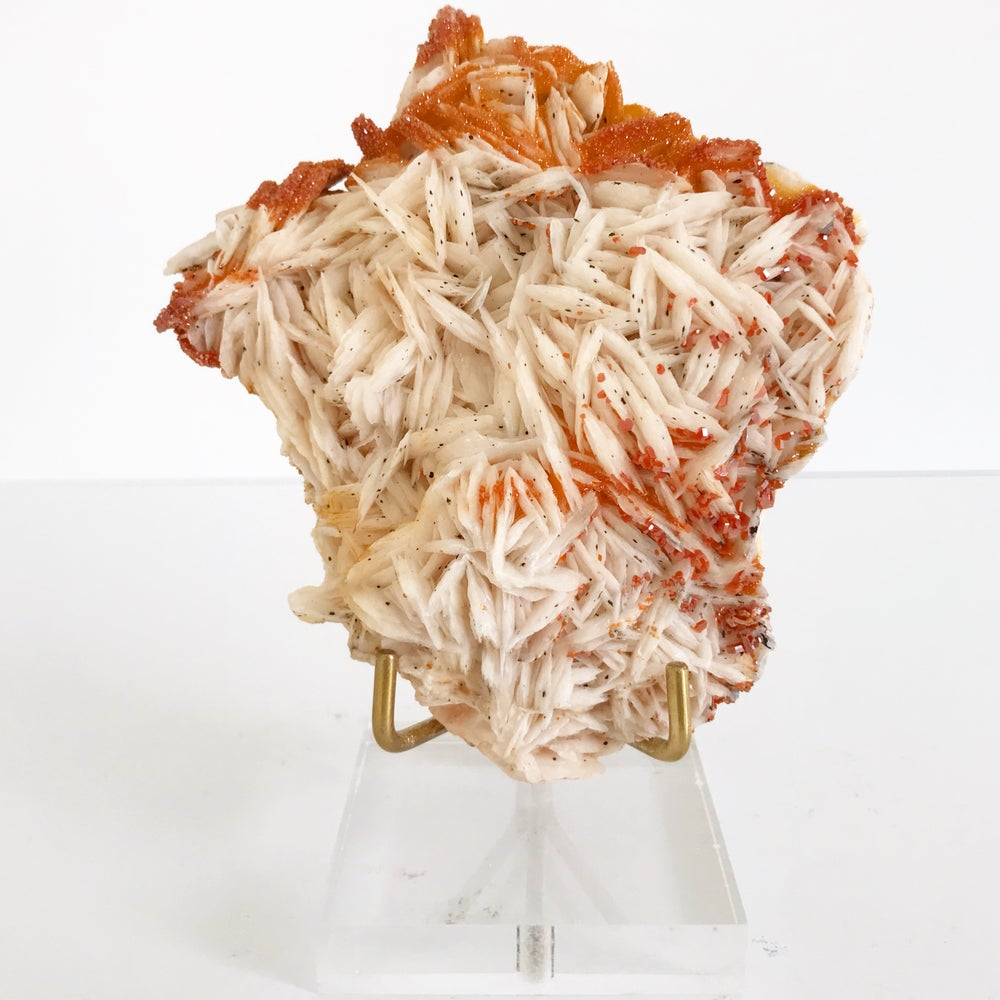 Image of Vanadinite/Barite no.49 + Lucite and Brass Stand