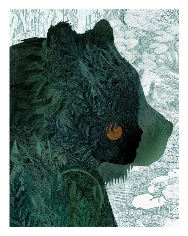 Image of Jungle Book - Baloo