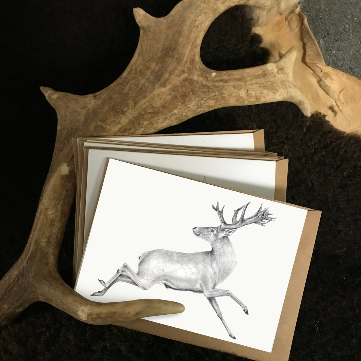 Image of White Stag Notecards