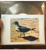 "Image of XPOEMSX ""Hermione The Seagull"" 8"" square lathe cut"