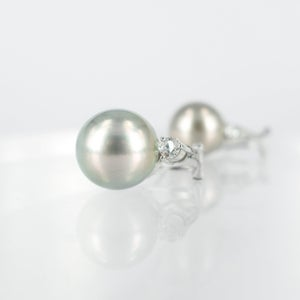 Image of Silver Tahitian and diamond stud earrings. Cp1048