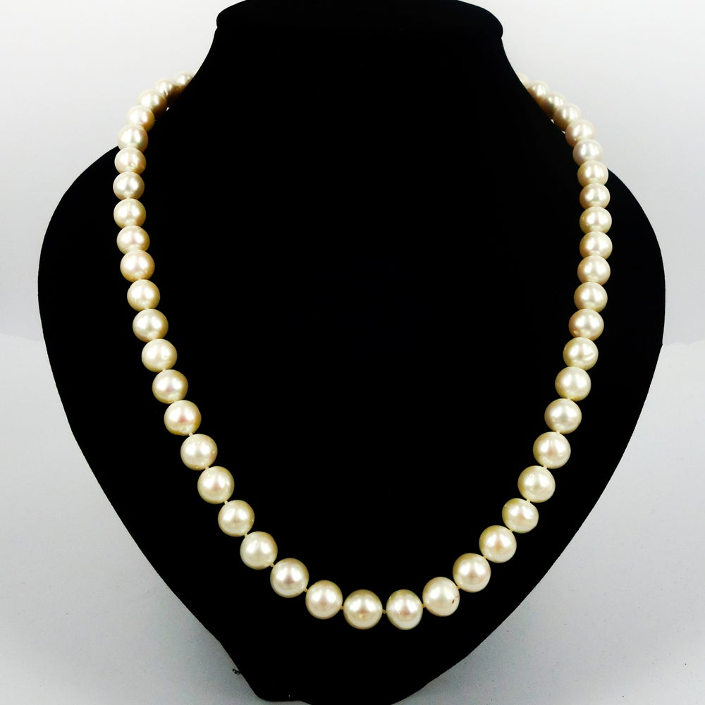 Image of Darling pearl strand. Cp1072