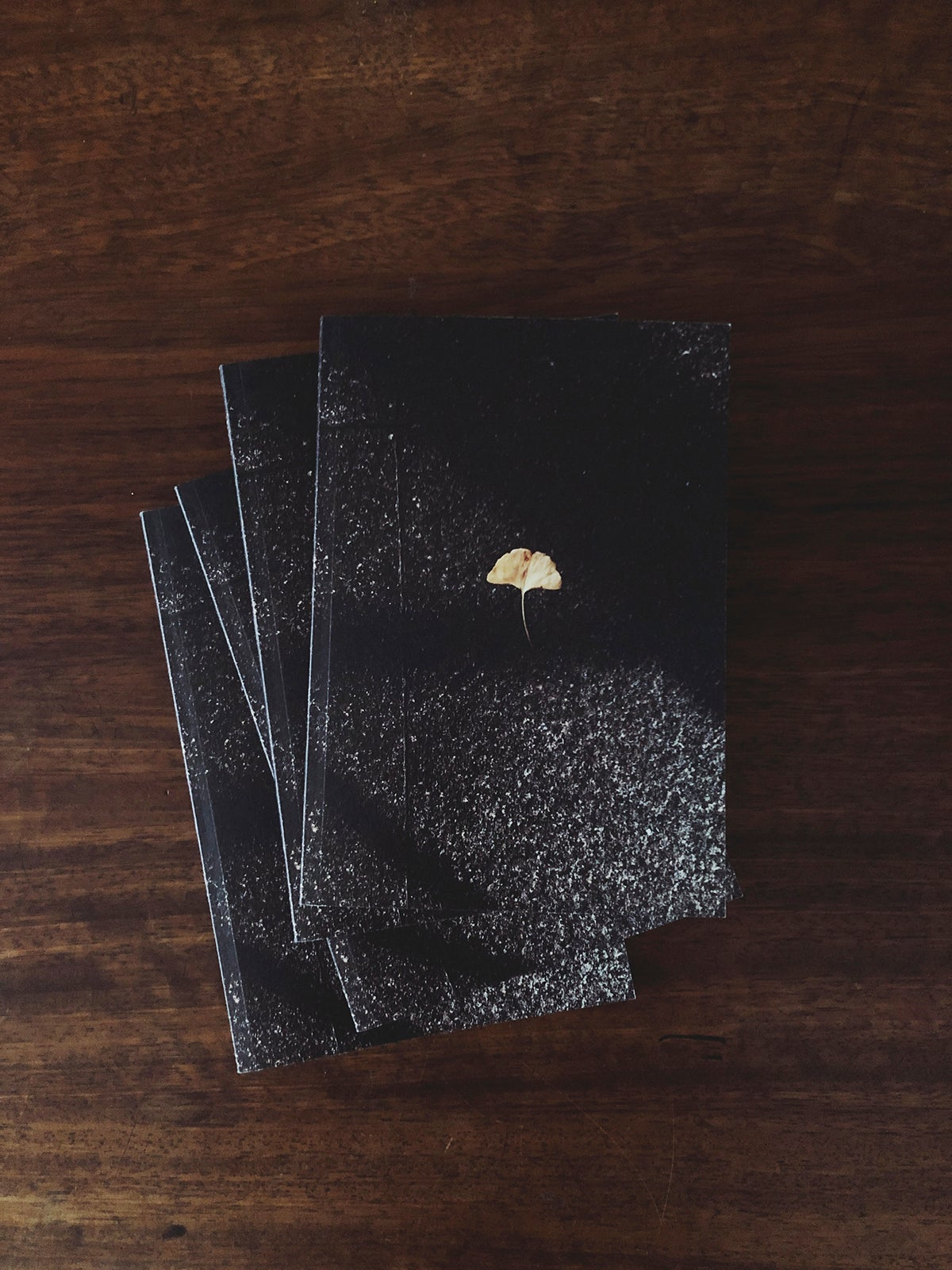 "Image of Notebook ""Gingko"""