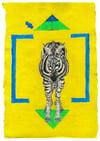 Zebra – A4 Print
