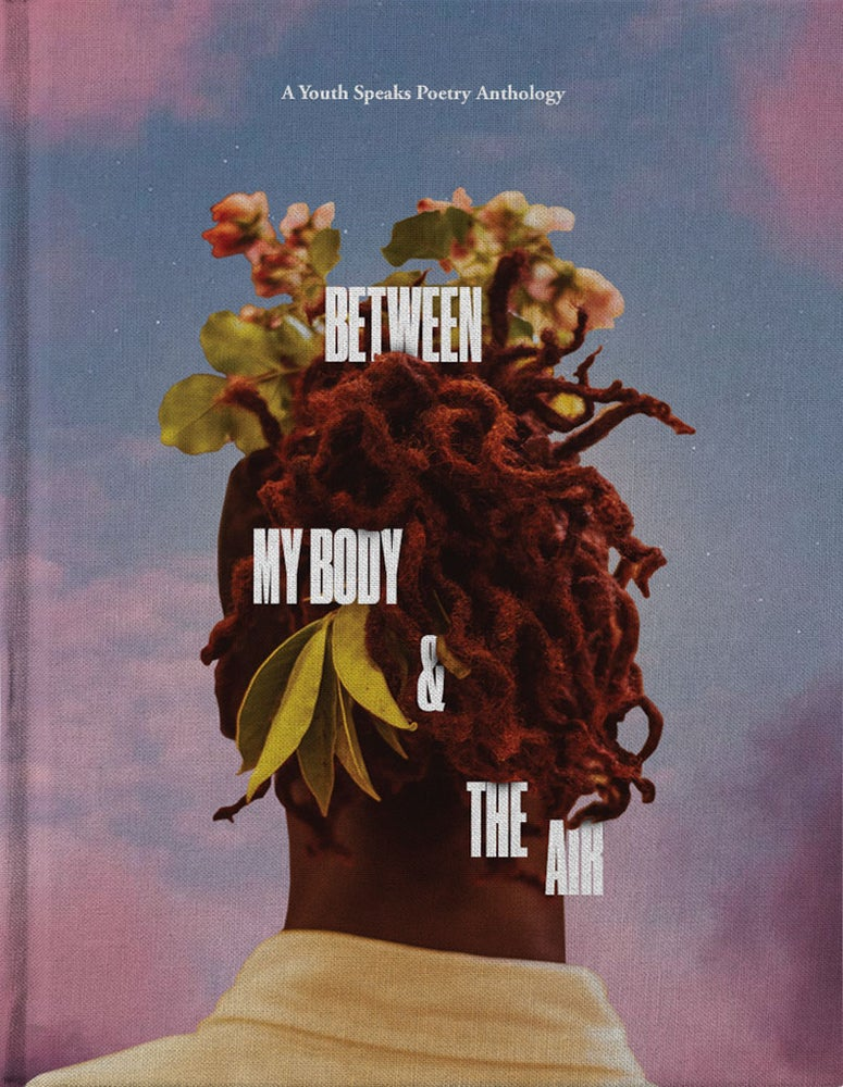 Image of Between My Body and the Air Ebook