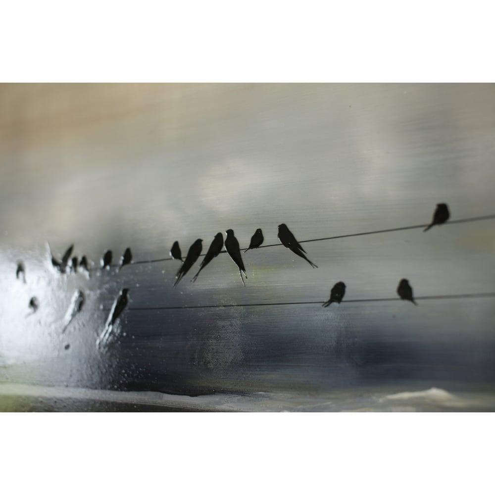 "Image of Original Canvas - Storm Swallows - 36"" x 36"""