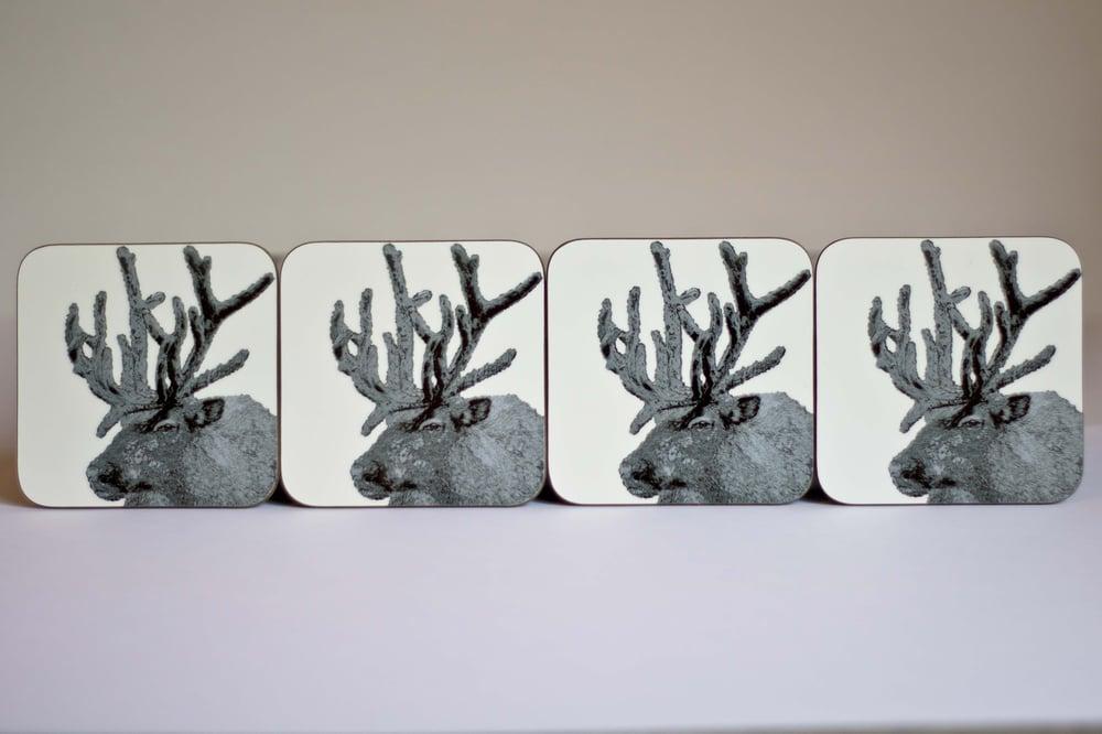 Image of Reindeer Coasters (set of 4)