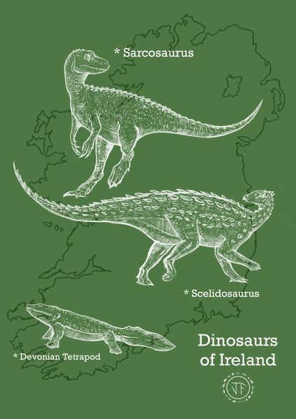 Image of First steps: The Dinosaurs of Ireland.