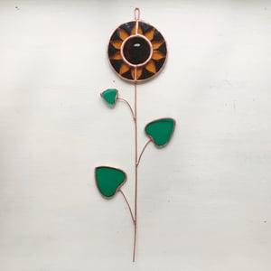 Image of Sunflower Stem no.1