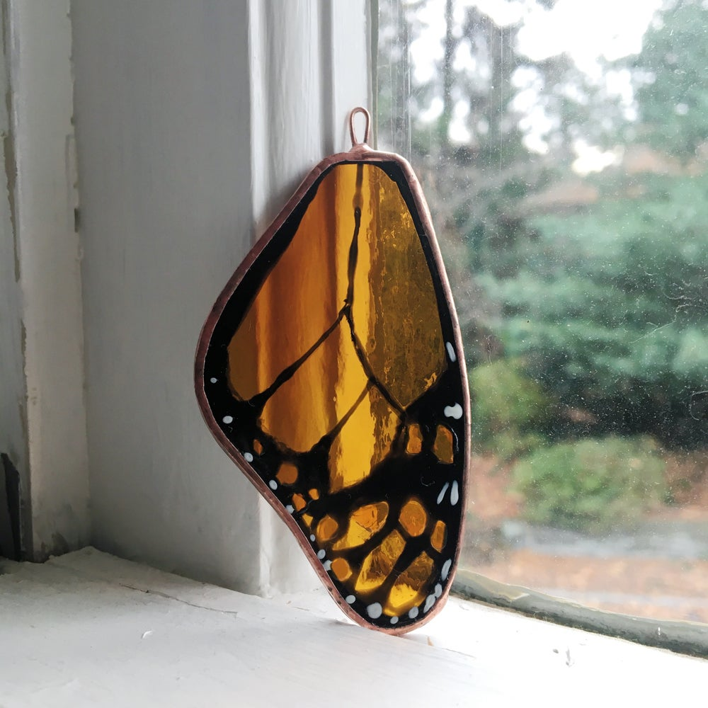 Image of Monarch Butterfly Wing