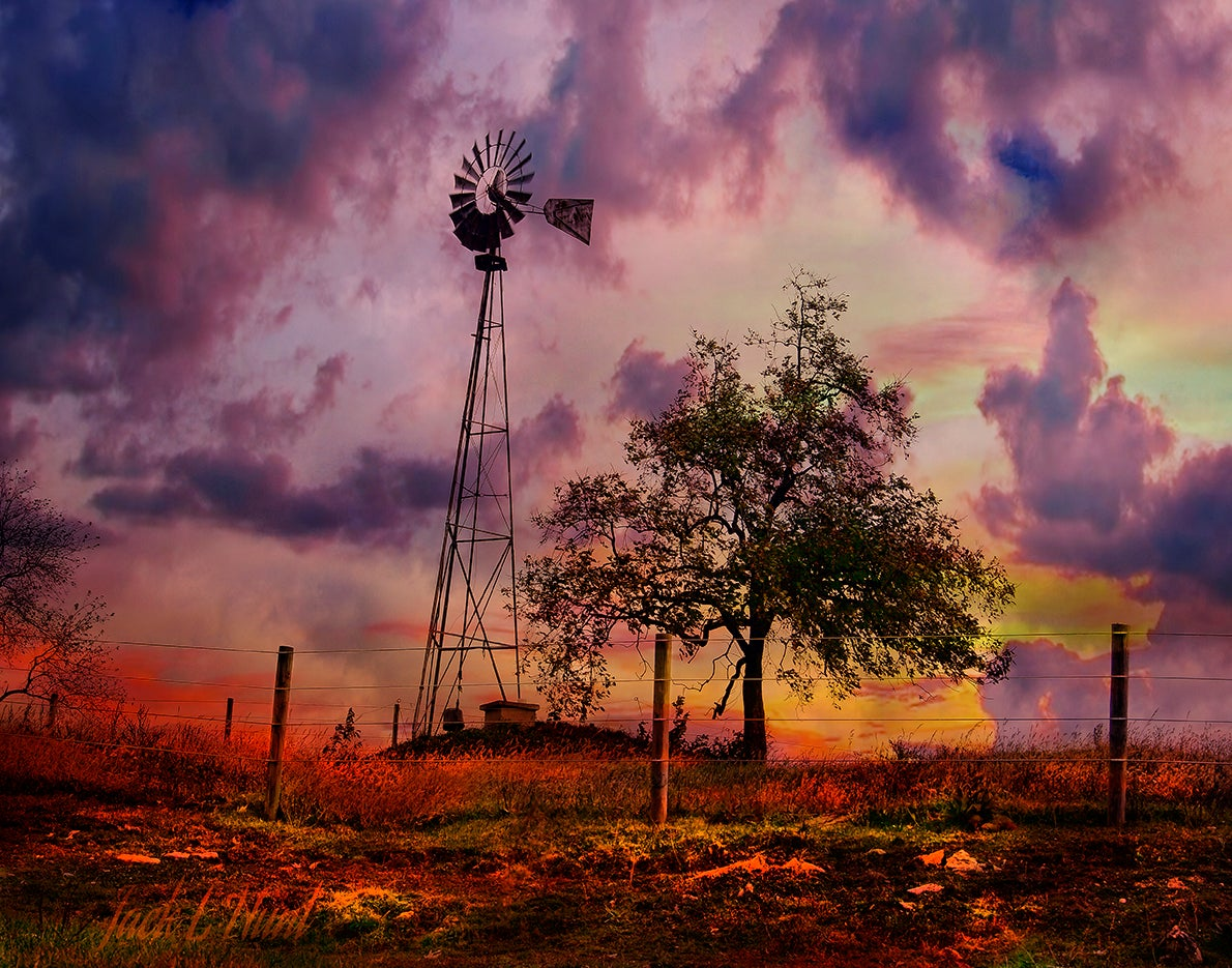 Of Appletrees and Windmills