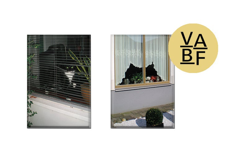 Image of Cats and Dogs in the Window (magnets)