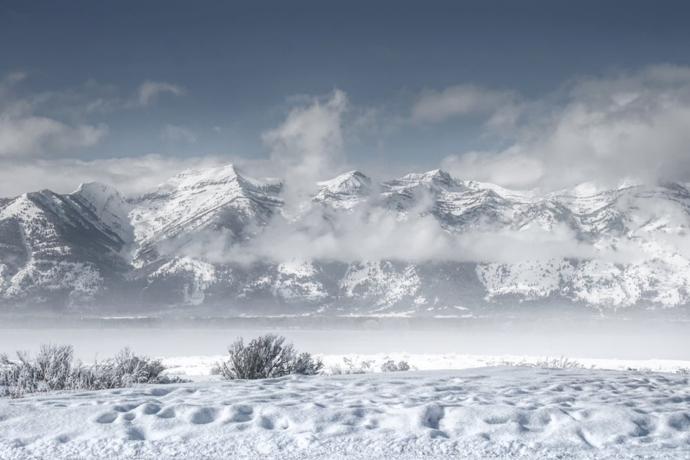 Image of Wyoming Winter