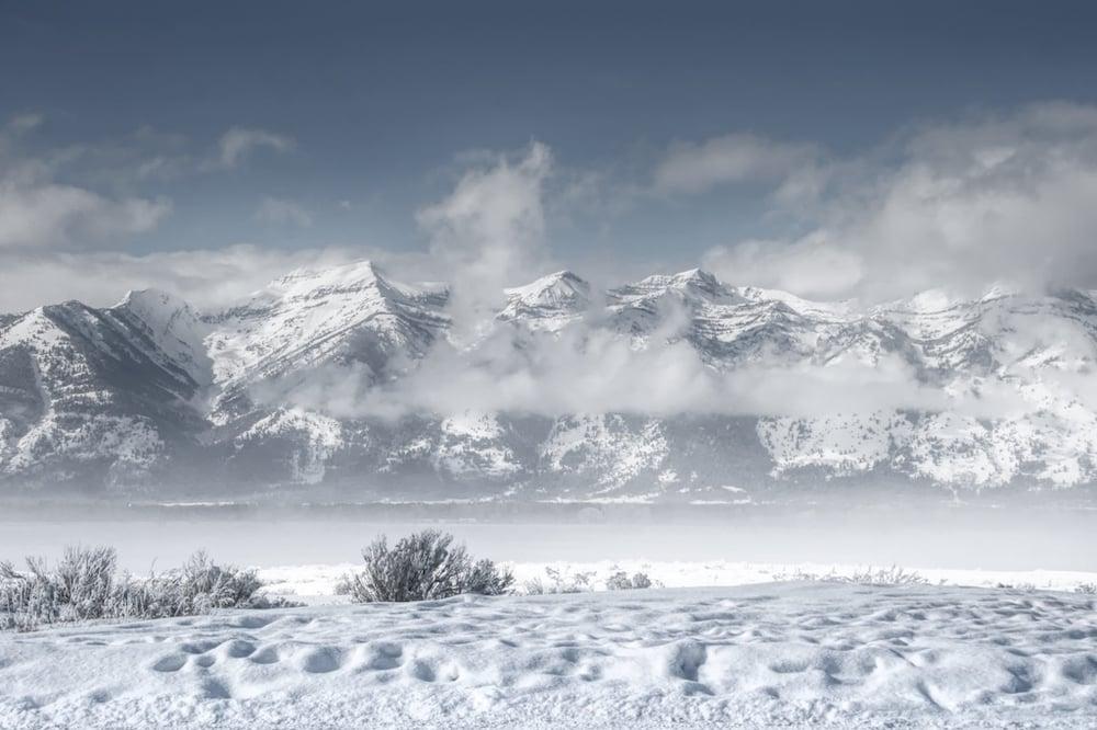 Image of Wyoming Winter