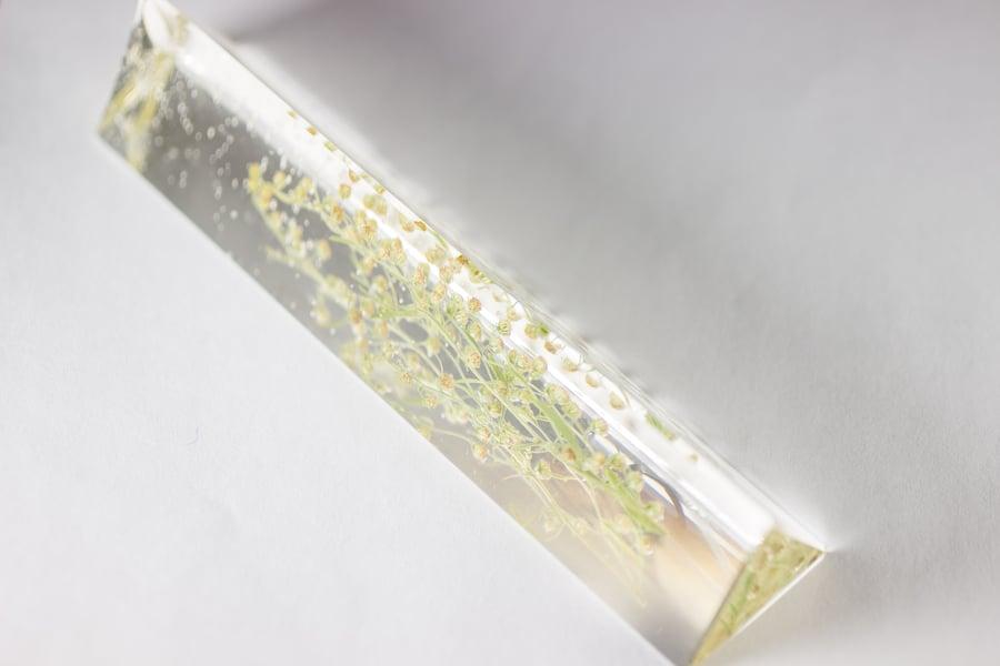 Image of Wormwood (Artemisia absinthium) - Suncatcher Prism #1