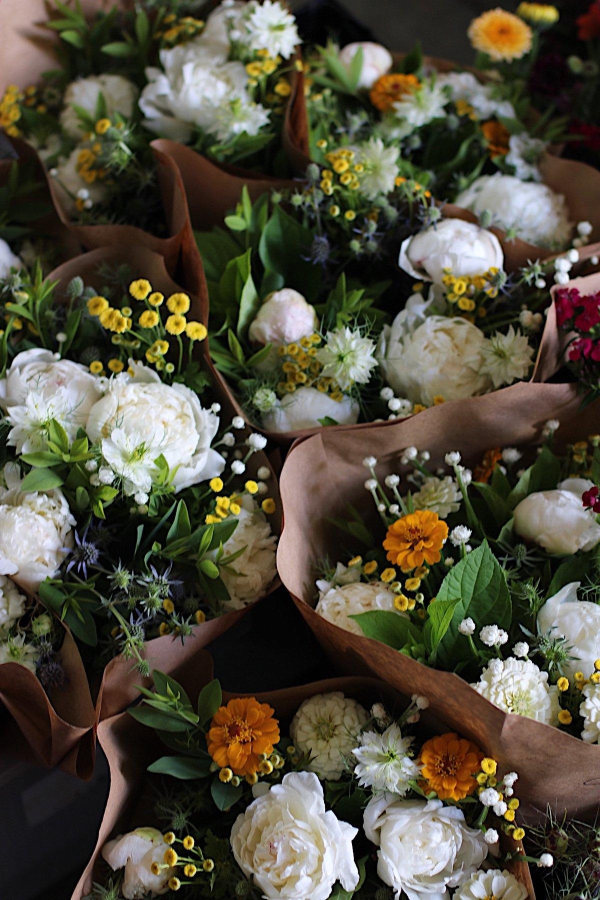 Image of JUNE Porch Petals PRESCRIPTION