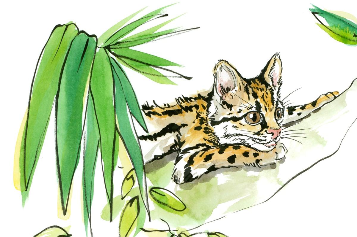 Jungle Print #1 – Ru & Friends