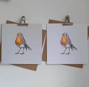 Image of Robin card