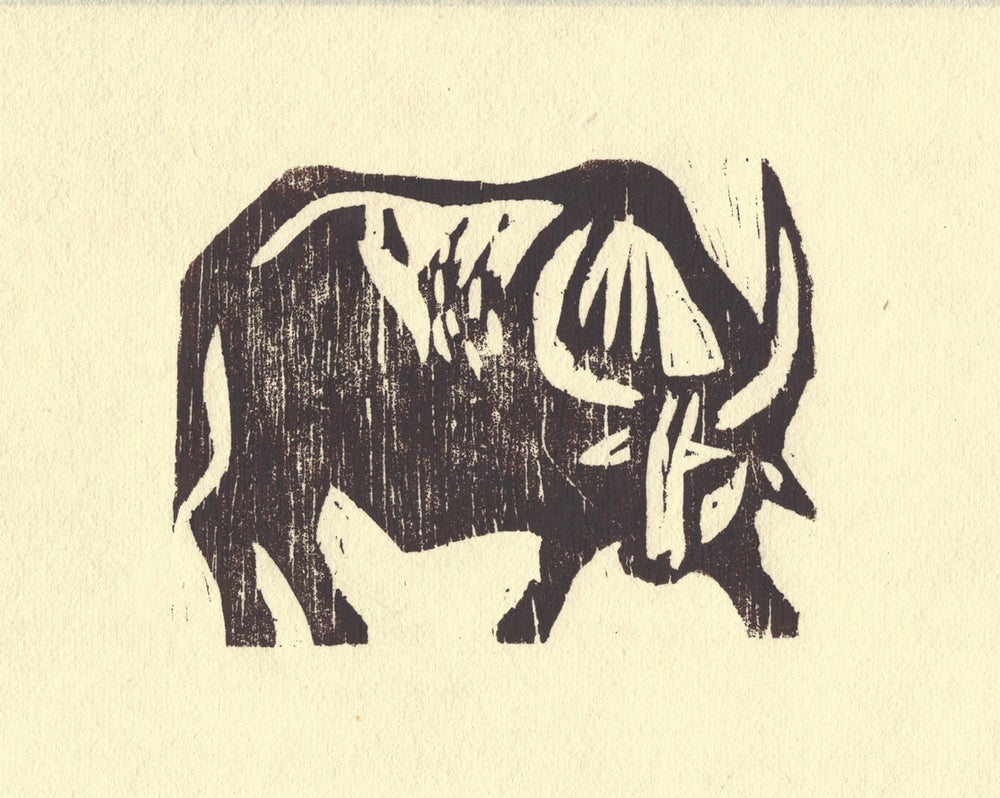 Image of Water Buffalo