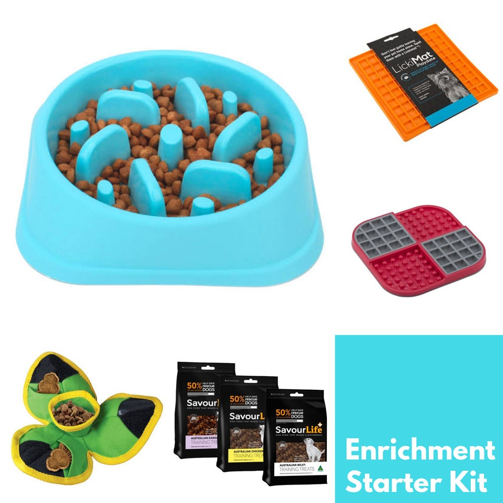 Image of Enrichment Starter Kit