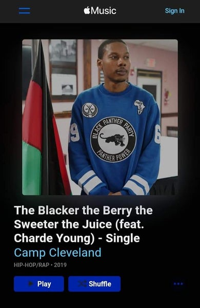 Image of The Blacker the Berry