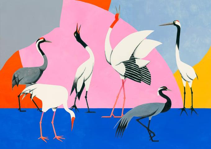 Image of Cranes