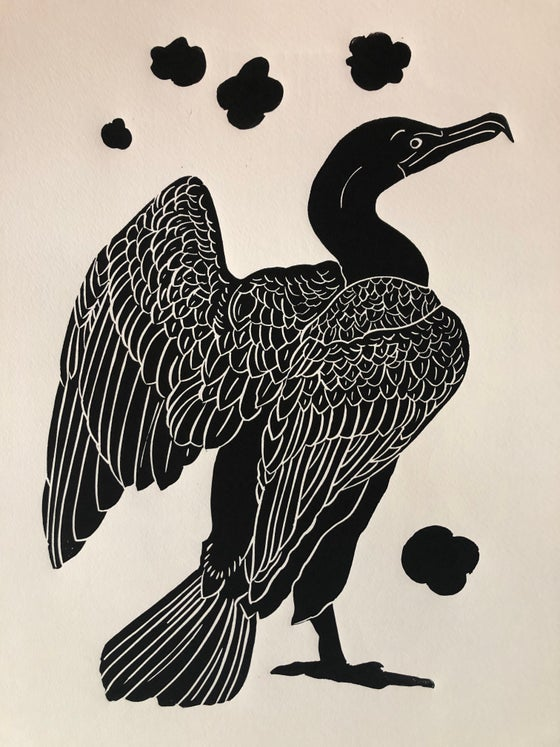 Image of Cormorant