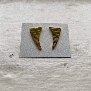 Image of fang earrings