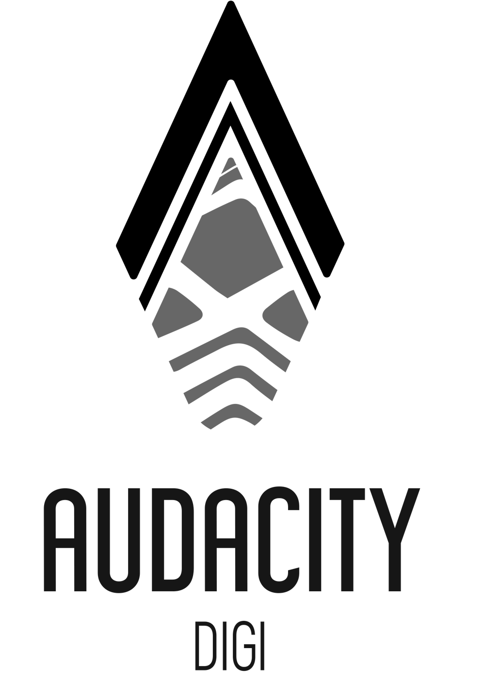 Image of [ DIGITAL PRODUCT ] AUDACITY DIGI VOLUME 2 FULL EVENT PLAYBACK