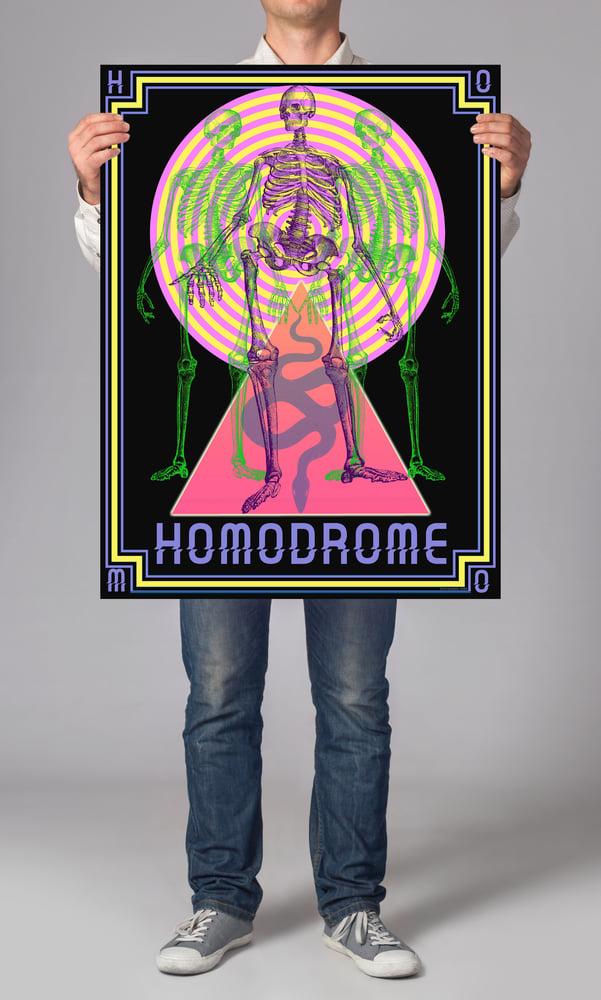 Image of HOMODROME SKELETON POSTER