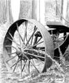 Willingdon Trail Art Print