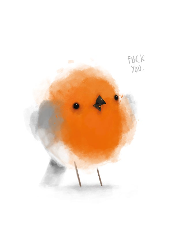 "Image of ""Rude Robin"" A4 print"