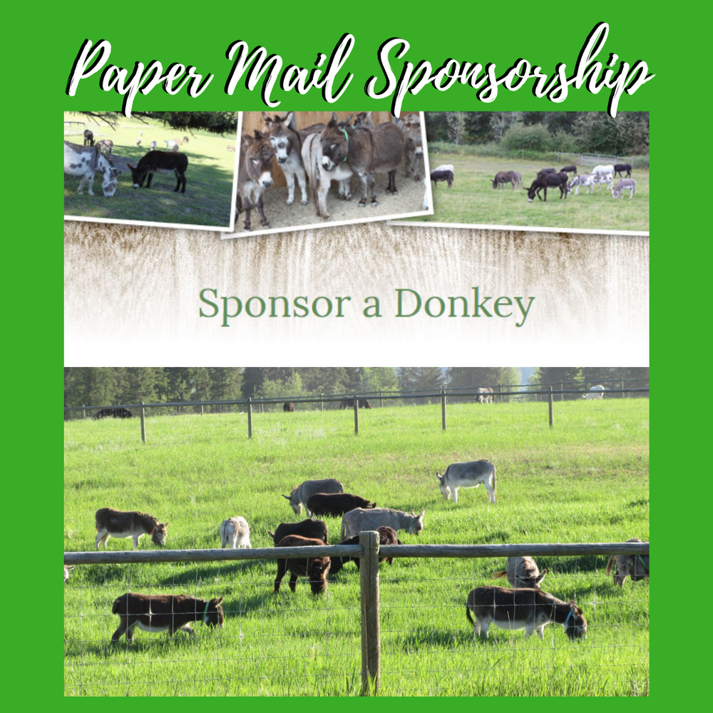 Image of Sponsor a Donkey - Paper Mail Package