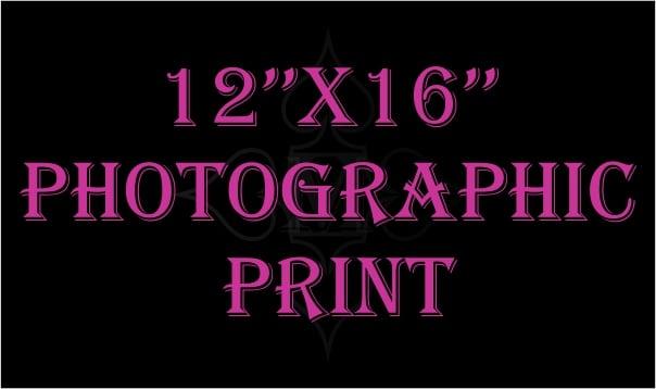"Image of 12""x 16"" Photographic Print"