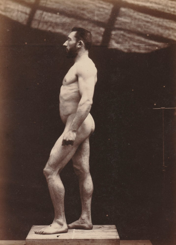 "Image of Paul Richer: ""Nu masculin, vu de profil"", ca. 1890"