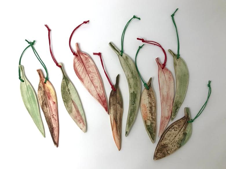 Image of Gum Leaves