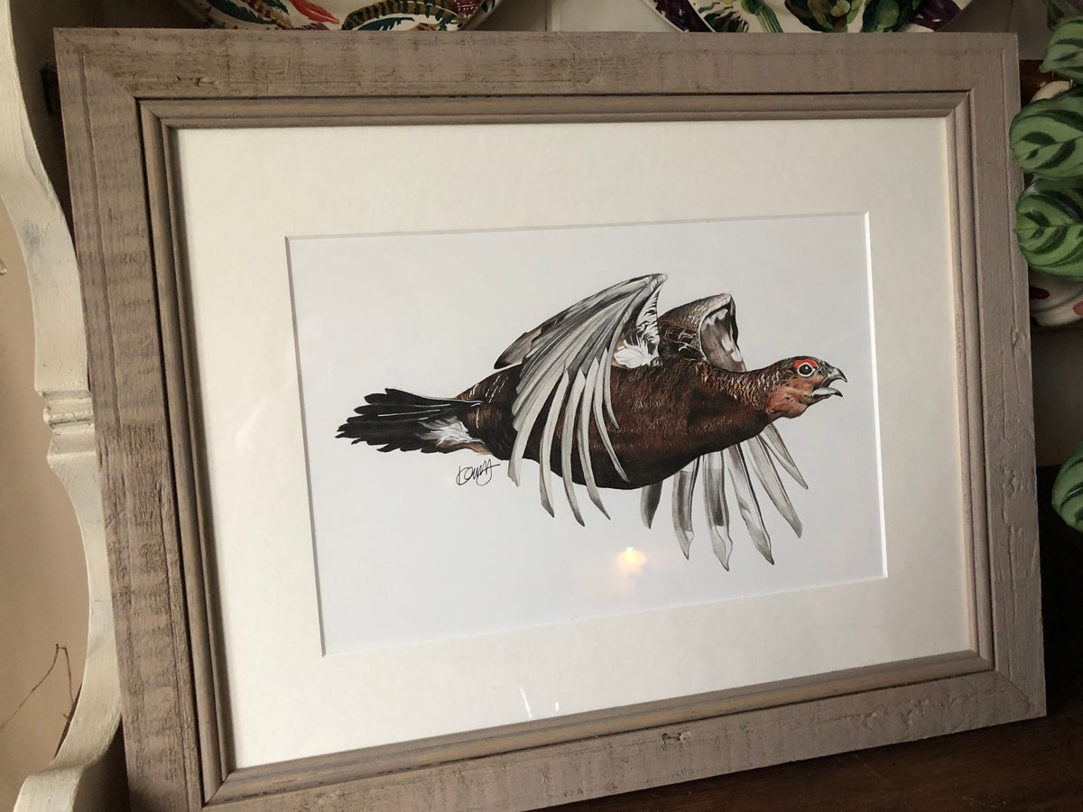 Image of Flying Red Grouse - Original