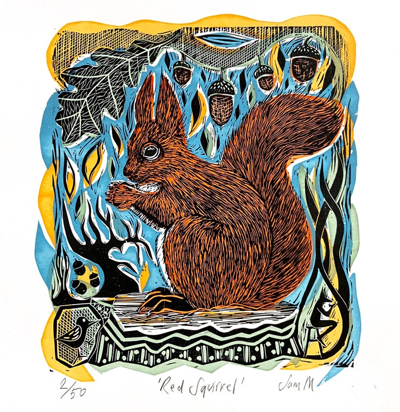 Image of Red Squirrel